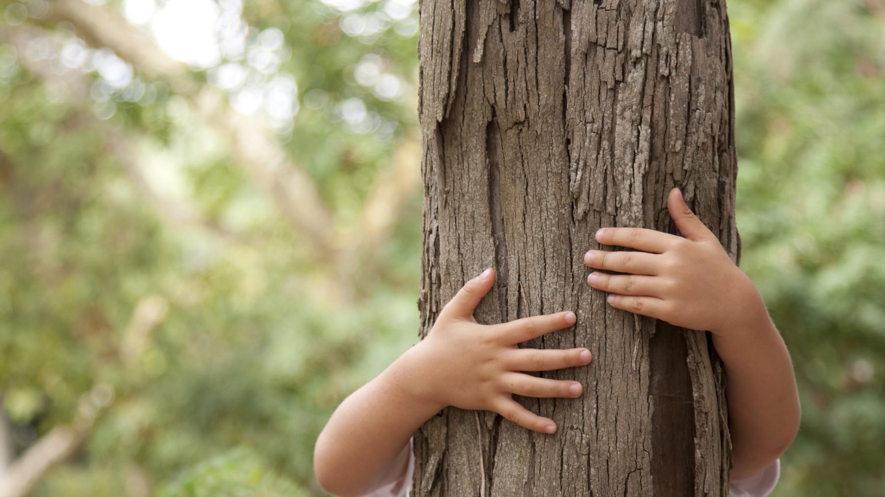 Ett barn som kramar en trästubbe