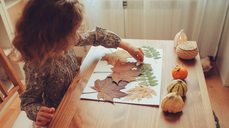 En tjej som arrangerar torkade löv på ett vitt pappersark
